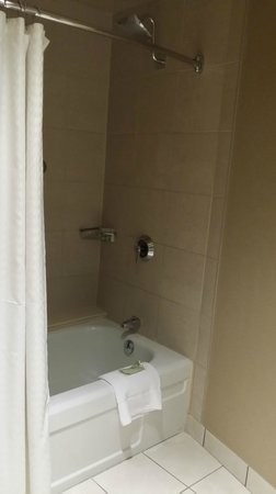 The Westin Edmonton: Nice showerhead but older tub