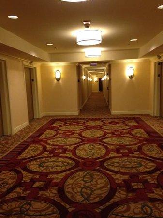 InterContinental Chicago Magnificent Mile: dreamy hallway