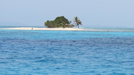Paya Bay Resort : They will take you to Pigeon Cay to snorkel and have lunch on the beach