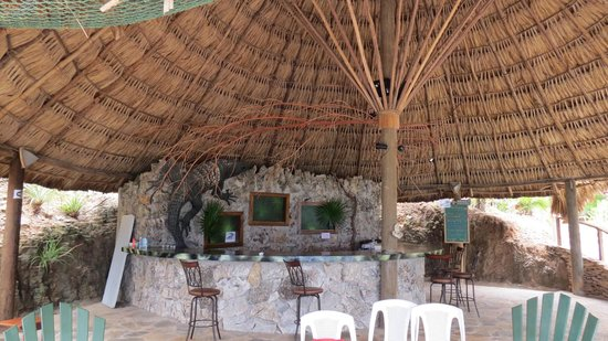 Paya Bay Resort : The Black Iguana Bar