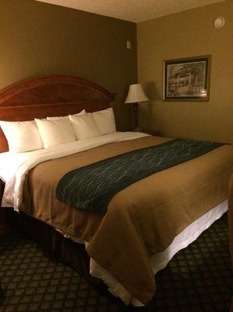 Comfort Inn: Clean bed
