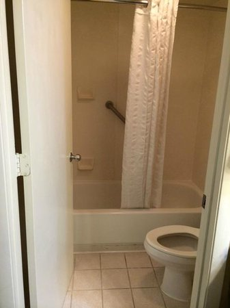 Comfort Inn Sun City Center: TINY bathroom!