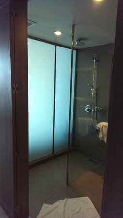 Novotel Bangkok Platinum Pratunam: bathroom - shower