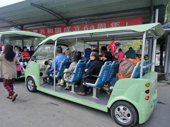 Maiji Shan Caves: Buggy car