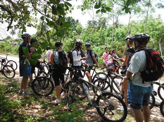 Amazing Bike Tours : Koh Yao Noi bike tour 2014-04-25