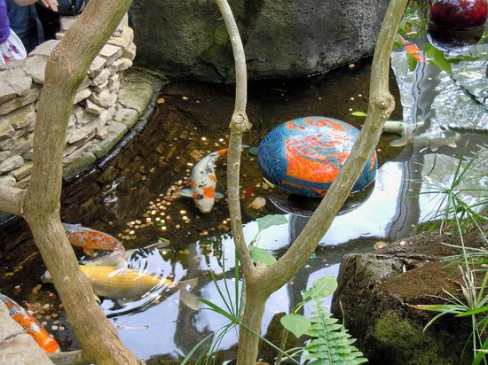 """Franklin Park Conservatory and Botanical Gardens: Dale Chihuly's """"floats"""" with fishes"""