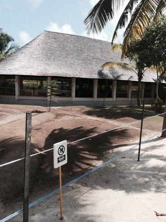 The Sun Siyam Iru Fushi Maldives: отель - сплошная стройплощадка, только толку нет, настолько все запущенно