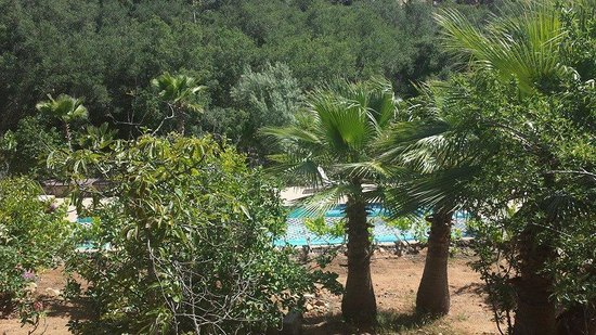 Casa Encinares Bed and Breakfast: Amazing view from cottage with view of pool