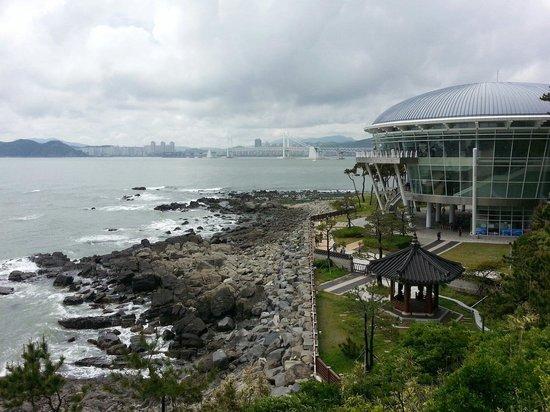 APEC Naru Park: Nice view