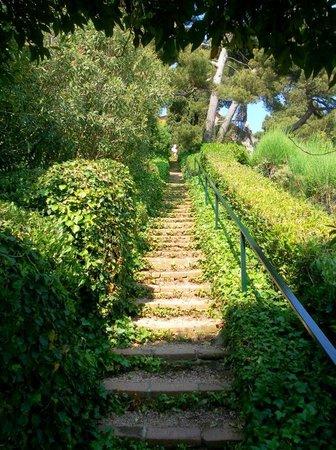 Jardin Santa Clotilde : Santa Clotilde Gardens