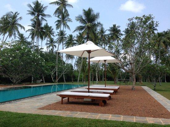 Taru Villas - Rock Villa : Fabulously relaxing pool and garden