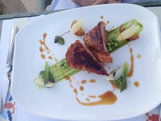 Sheraton Grand Los Cabos Hacienda del Mar : Duck from Cortez restaurant, delicioso!
