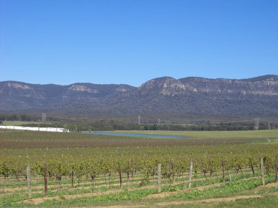 Boutique Wine Tours Hunter Valley Review