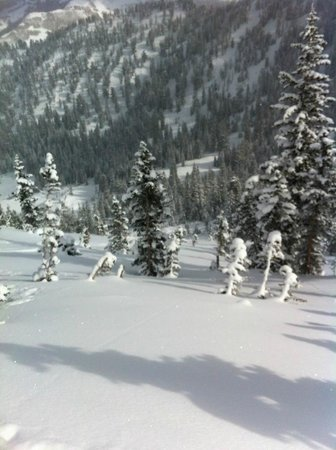 Utah Mountain Resort Tours - Day Tours : Dropping in!!