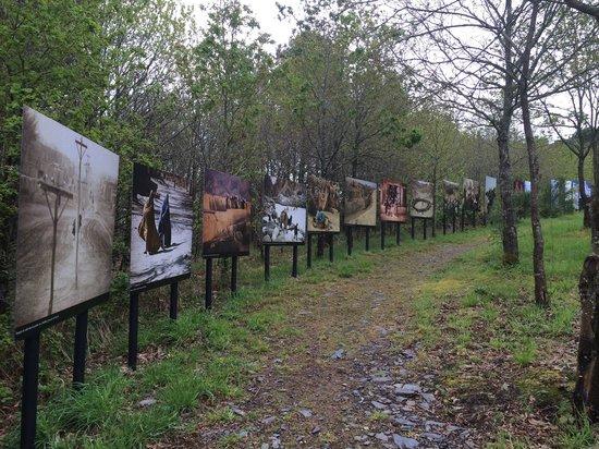 La Gree des Landes : Expo photo dans le parc