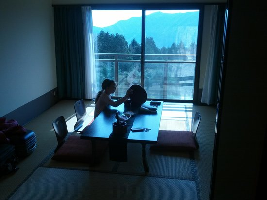 Hotel Green Plaza Hakone: Our Japanese suite