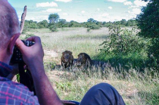 Garonga Safari Camp: Pirschfahrt