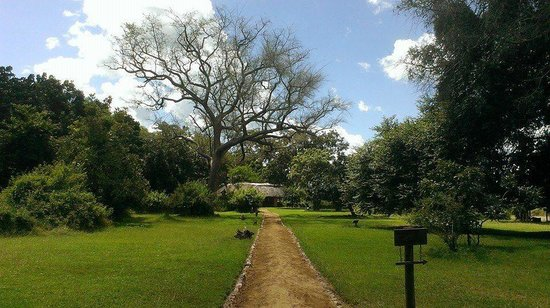 Track and Trail River Camp: van chalet naar restaurant