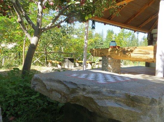 Banjara Camp &  Retreat - Sangla Valley Camp: Common Area for Tea/ snacks
