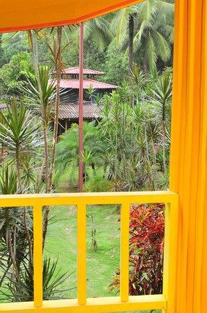 La Pina Lodge B&B: Balcony view in second floor room