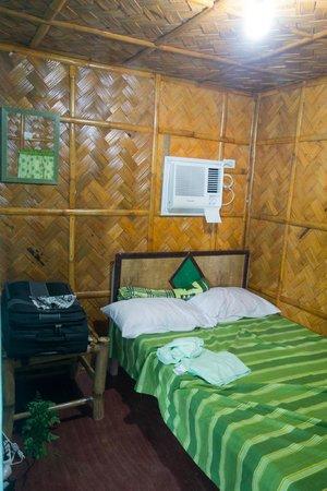Crazy Coconut: Die Zimmer sind einfach aber dennoch komfortabel