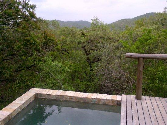 andBeyond Phinda Mountain Lodge : Privat splash pool