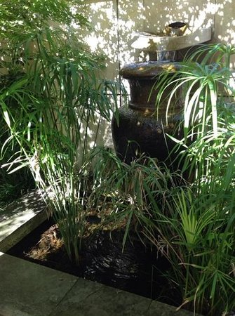 Anderledy Lodge : tranquil water in the garden