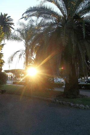 NH La Spezia: Вид на парк и аллею