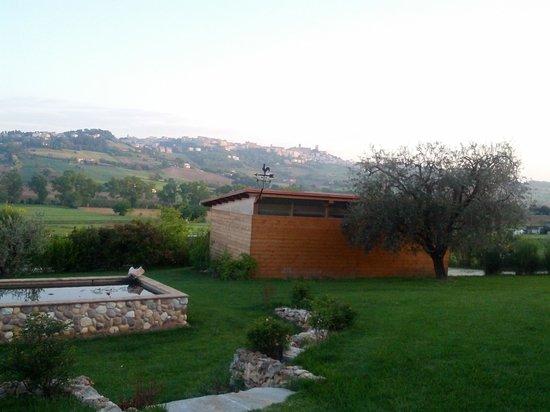 B&B Bellafiora: giardino