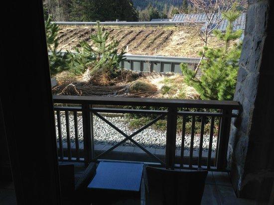 Nita Lake Lodge: View from bedroom