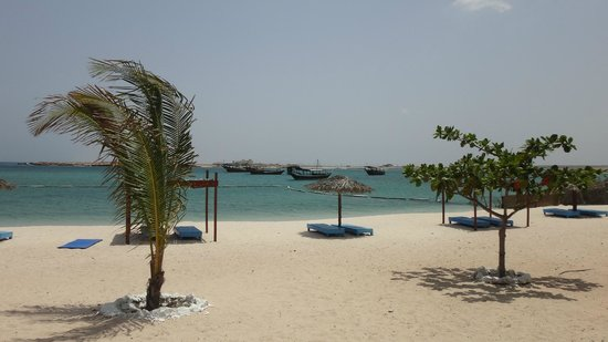 The Turtle Beach Resort (Ras al Hadd) : beach front