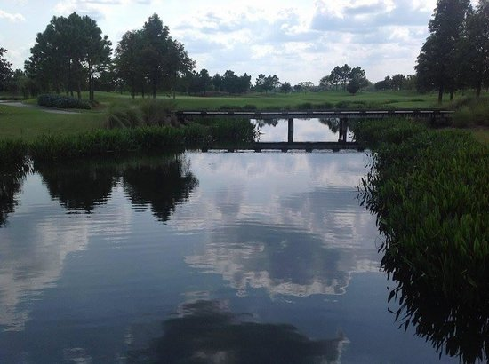 Rosen Shingle Creek : golf course 2