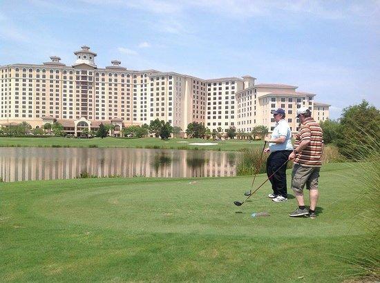 Rosen Shingle Creek : golf course 3