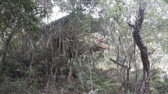 Black Leopard Camp: Honeymoon suite from the river below
