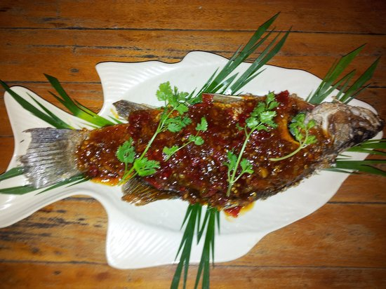 Kob Thai Restaurant: Snapper with spicy Sauce