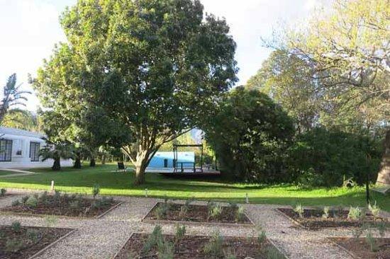 Bloomestate : Garten
