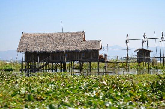 Shwe Myanmar : Une vue de l'habitat du lac Inle