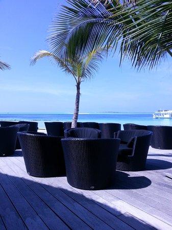 Komandoo Maldives Island Resort : Kandu Bar