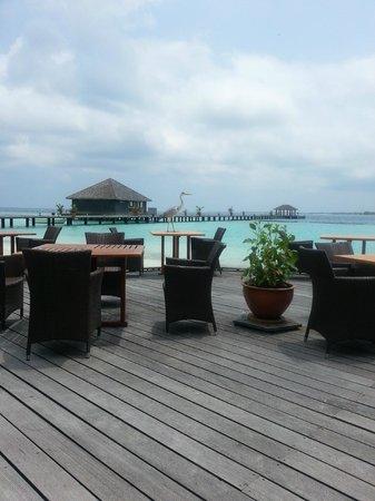 Komandoo Maldives Island Resort : Falhu Restaurant