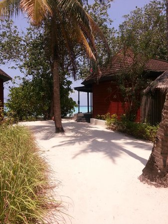 Komandoo Maldives Island Resort : Beautiful view from the sandy pathway