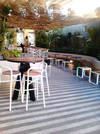 Ivanhoe hotel: level one garden