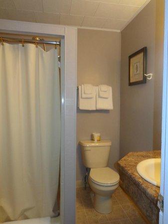 Martin's Motel: Guest Room bath 12