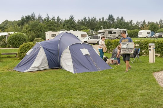 Teversal Camping and Caravanning Site: Large tent pitches