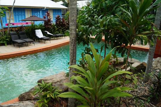 Paradise On The Beach Resort Palm Cove : Pool area.