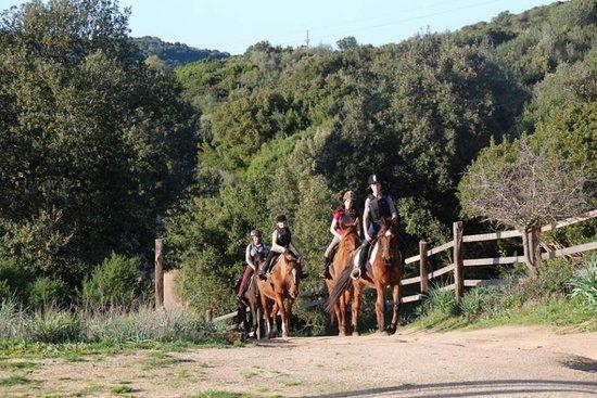 Centro Equestre La Prugnola