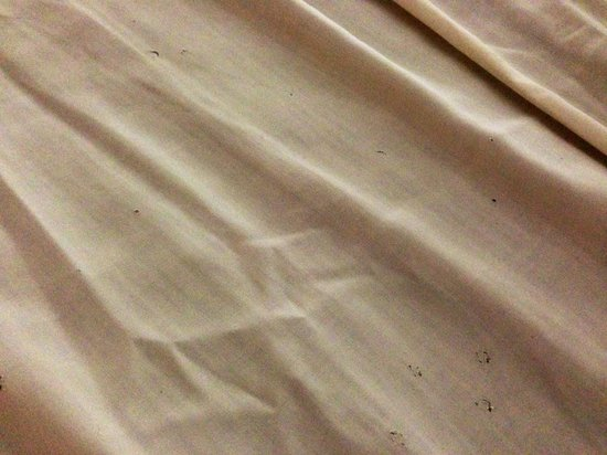 Pavilion Songkhla Hotel: Stained & torn sheets