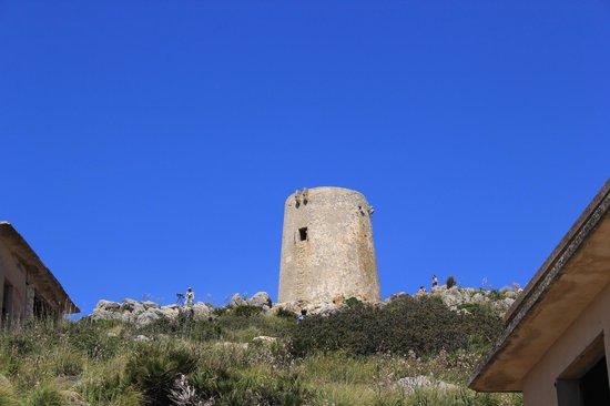 Cap de Formentor: Da oben kreisen die Geier