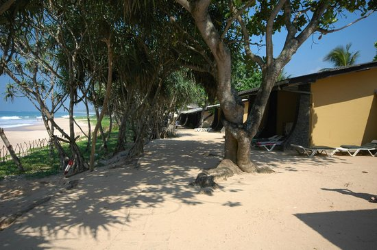 Koggala Beach Hotel : бунгало