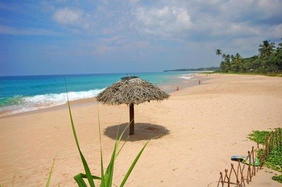 Koggala Beach Hotel : пляж отеля