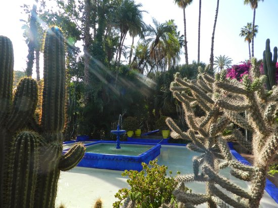 Hotel Riu Tikida Garden : le jardin d'yves saint laurent
